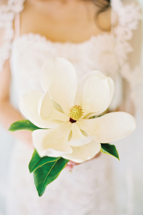 wedding flowers Magnolia bouquet ideas for spring wedding