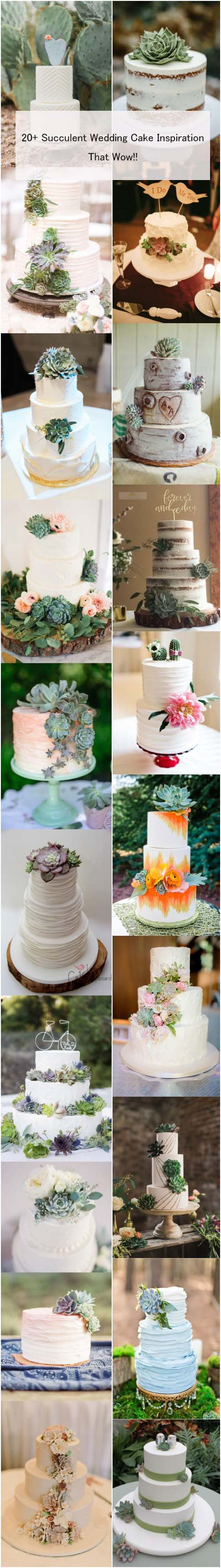 20+ Succulent Wedding Cake Inspiration That Wow at weddinginclude.com