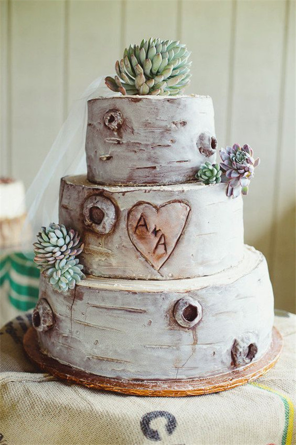 Birch Bark wedding cake with succulent