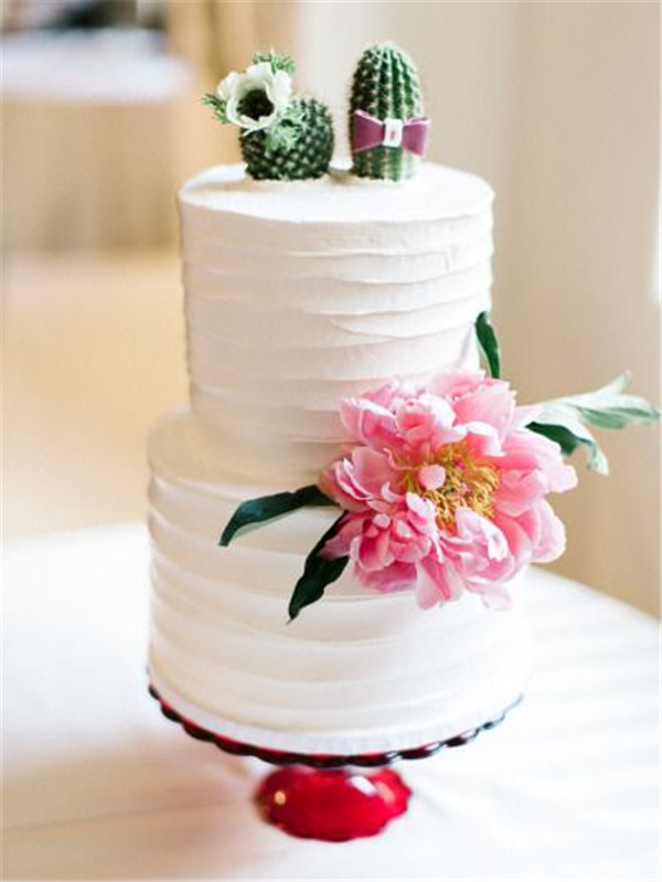 Colorful Mexican Inspired Wedding Cake with Succulent