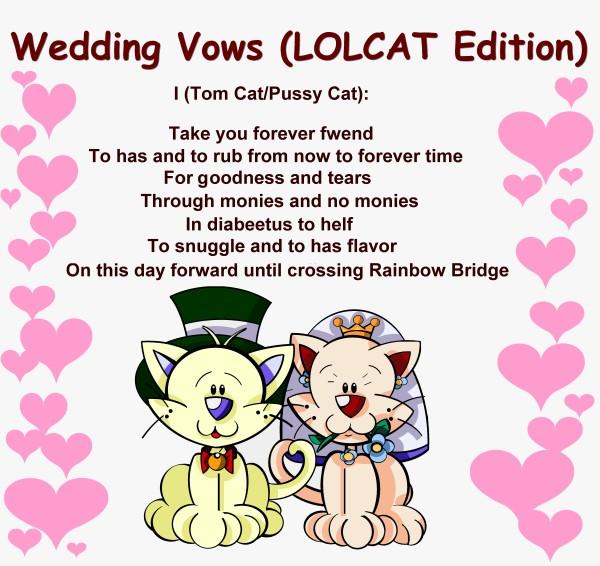 funny wedding vows jokes