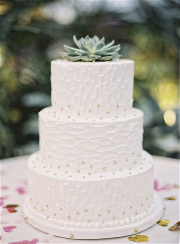 simple pearl wedding cake with succulent