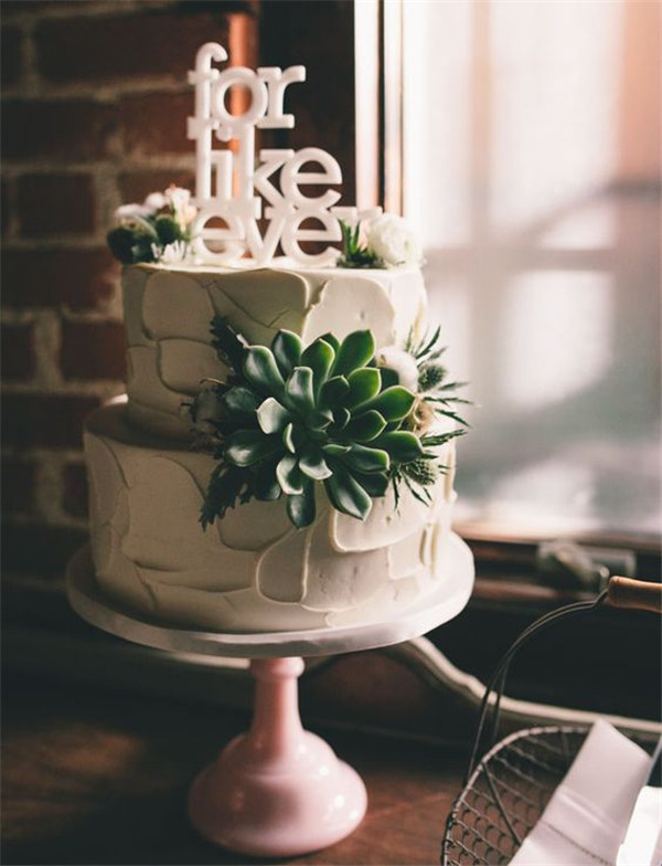 simple wedding cake with succulent