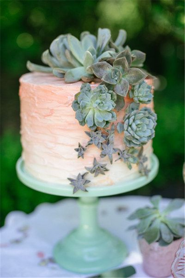 succulent-covered wedding cake ideas