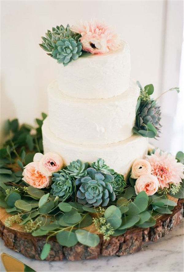 succulent topped wedding cake