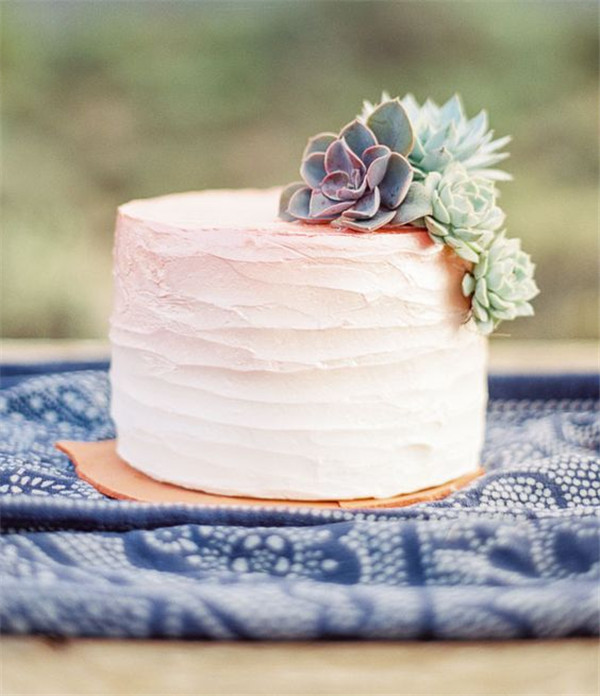 touch of pink wedding cake with succulent
