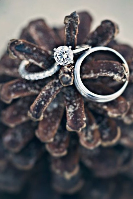 pinecones wedding ring holder