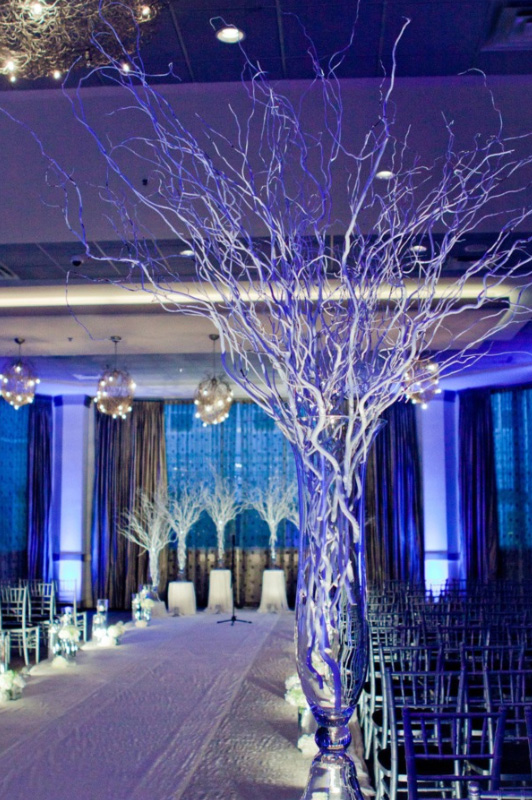 34 Chicago Wedding Venues Ideas - Page 2