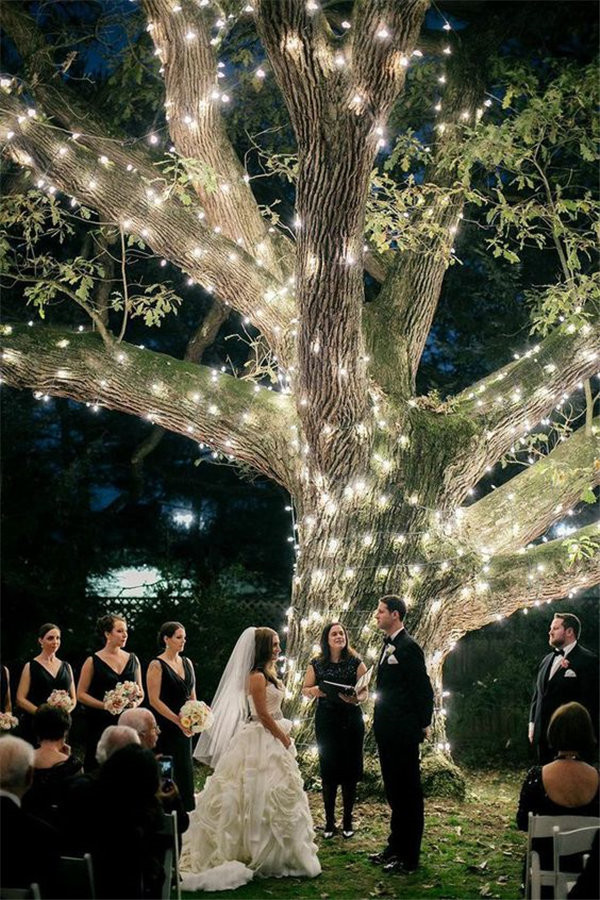 Wedding Under a Sparkling Tree at Aldie Mansion