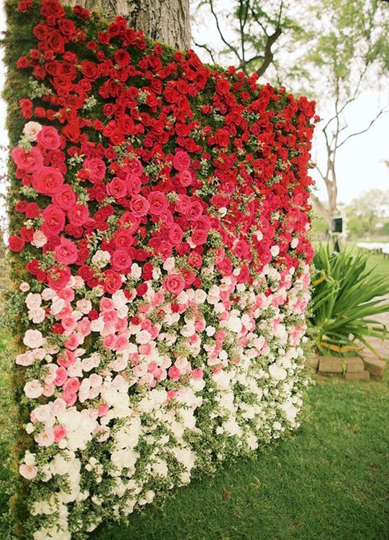Rose ombre wedding backdrop ideas
