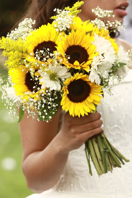 Sunflowers and Baby's Breath LOVE THIS ONE!