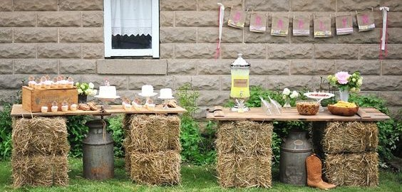 25 Chic Rustic Hay Bale Decoration Ideas For Country Weddings