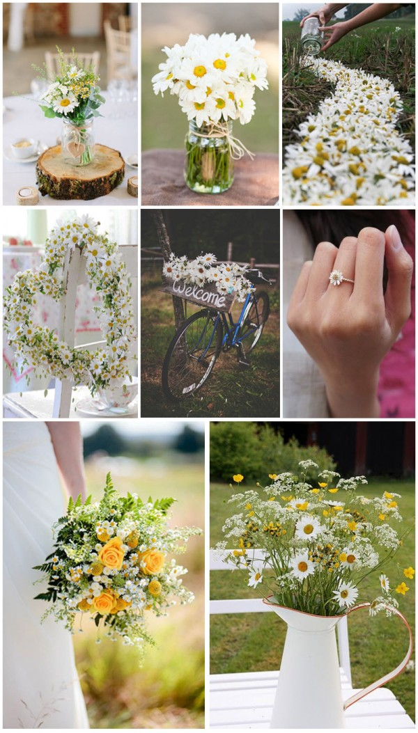 Creative ways incorporating daisy on your wedding