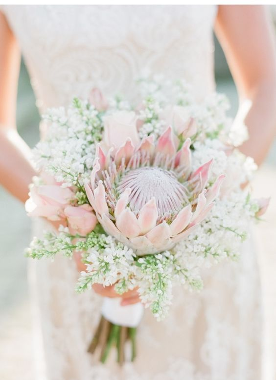 Bridal Shoot in Frascati blush protea bouquet