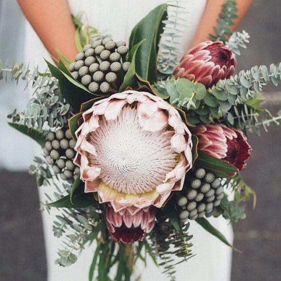 King protea bouquet love the colors, clear and simple