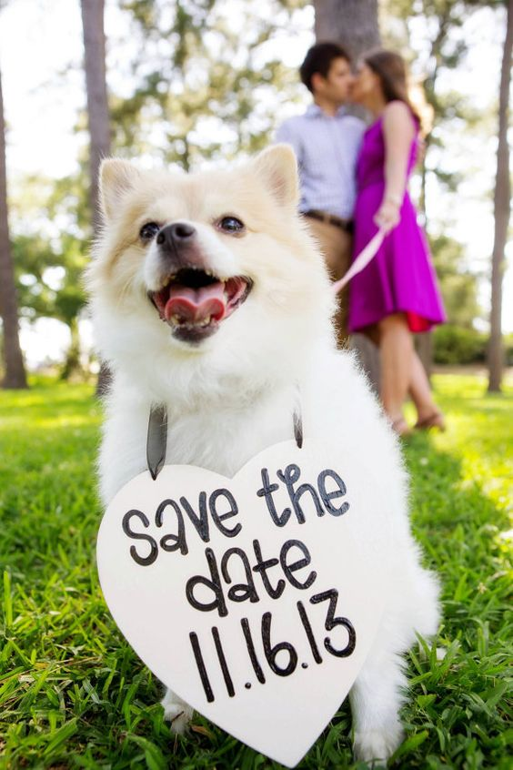 Save the Date Engagement Heart Sign With Your Dog