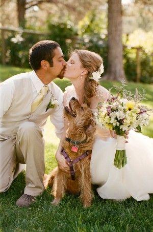 breathtaking dog photos with wedding couple