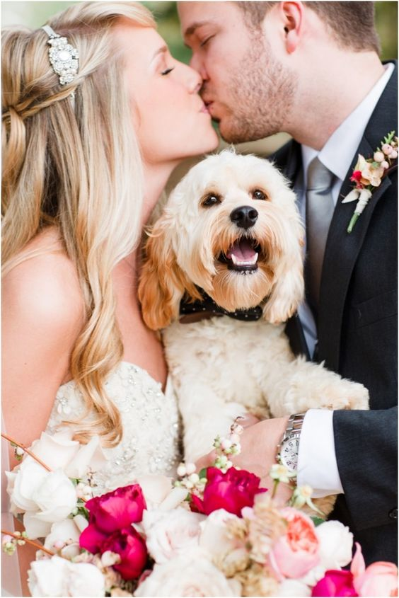 dogs at weddings-happy moments with the couple