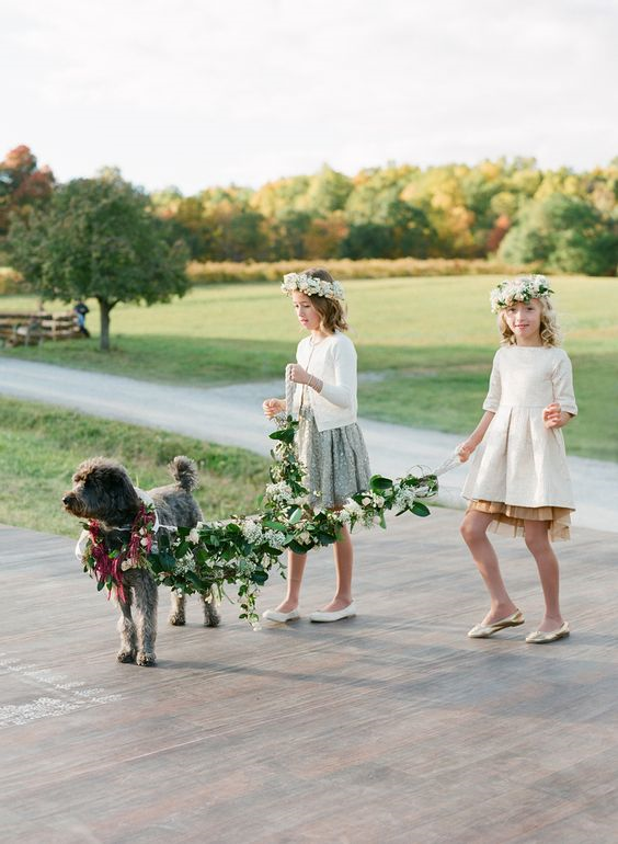 flower girls with a dog at wedding