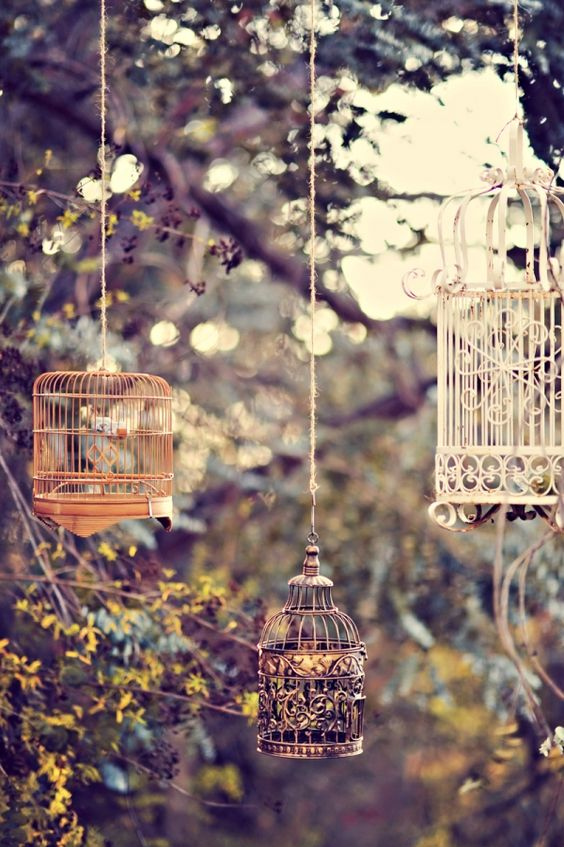 multifunctional metal birdcages for outdoor weddings