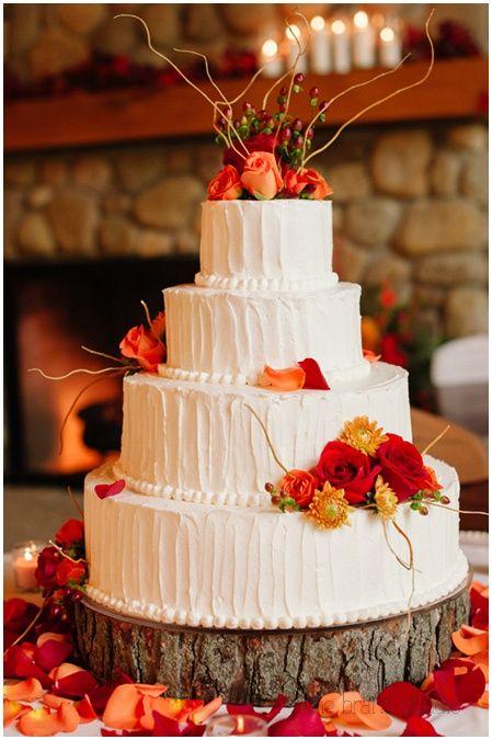 orange floral wedding cakes on tree trunk