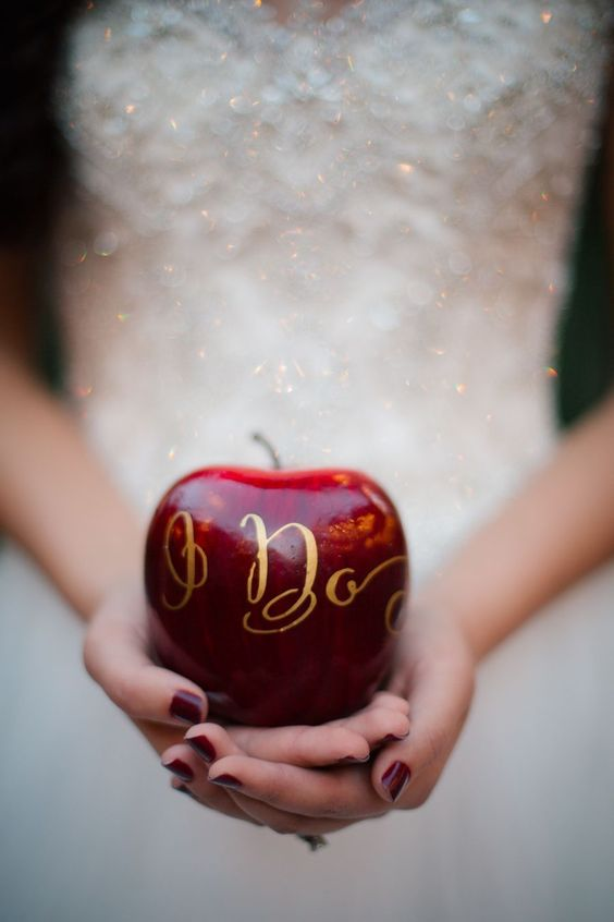 Creative and Fun Ideas for a Disney Wedding 002
