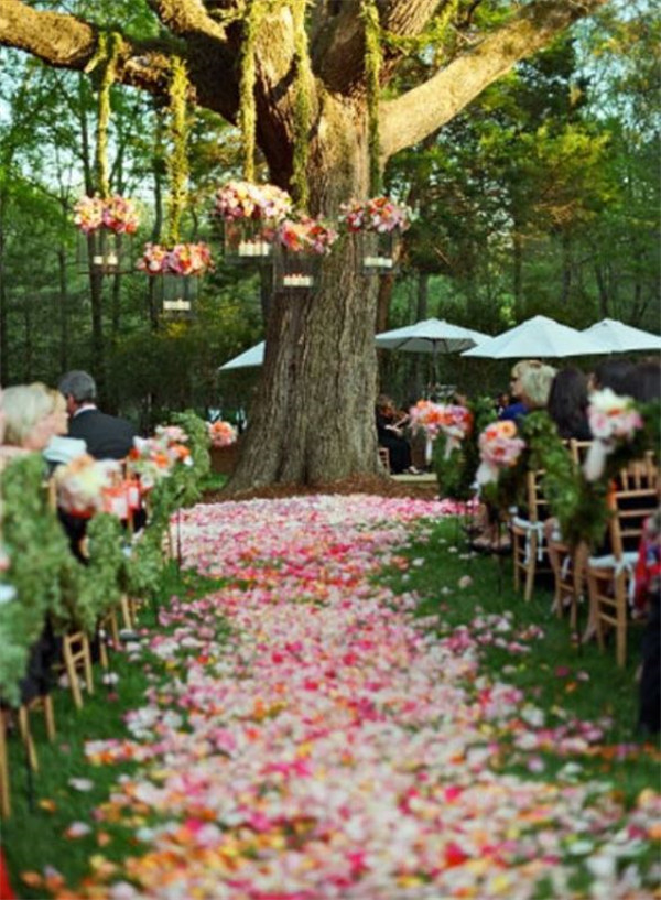 Picture Of amazing backyard wedding ceremony decor