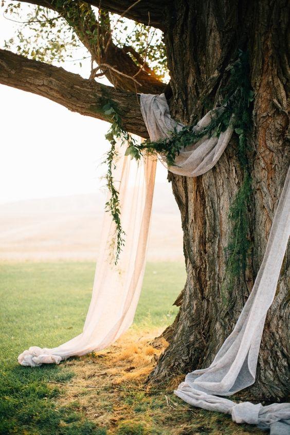 18 Stunning Tree Wedding Backdrop Ideas