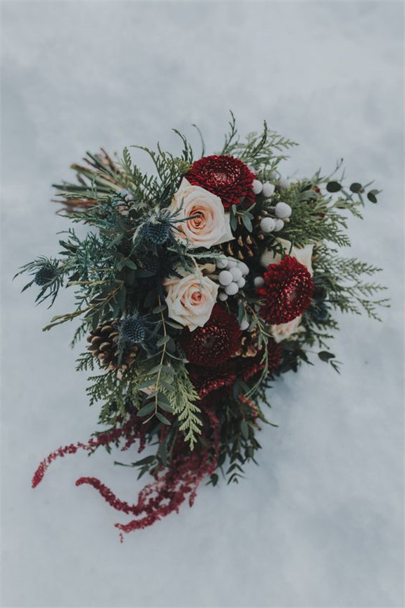 Amazing winter flowers