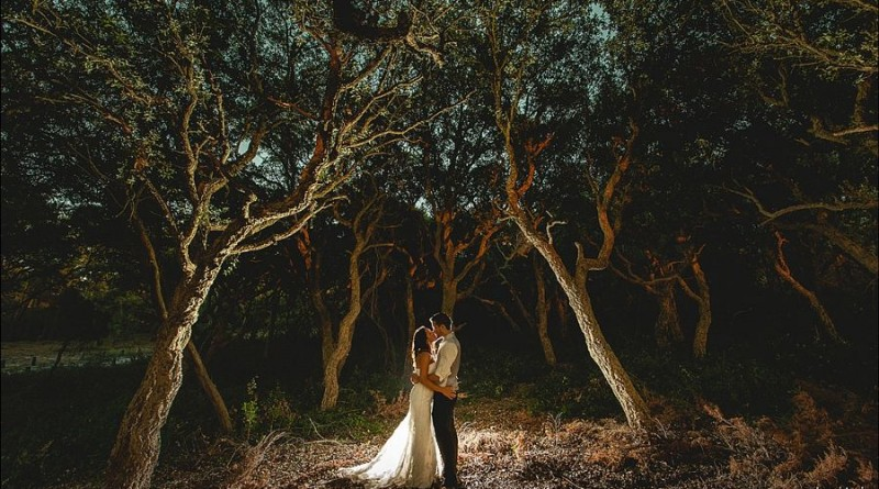 Creative Wedding Photo Ideas Worth Stealing 1106256872435763334